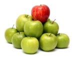 domination concepts with apples